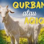 Qurban Atau Aqiqah